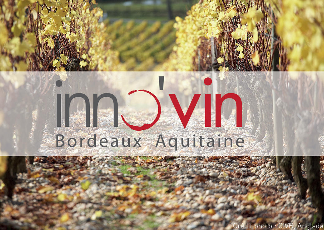 Le secteur vitivinicole, un écosystème dynamique dans tous le bordelais !