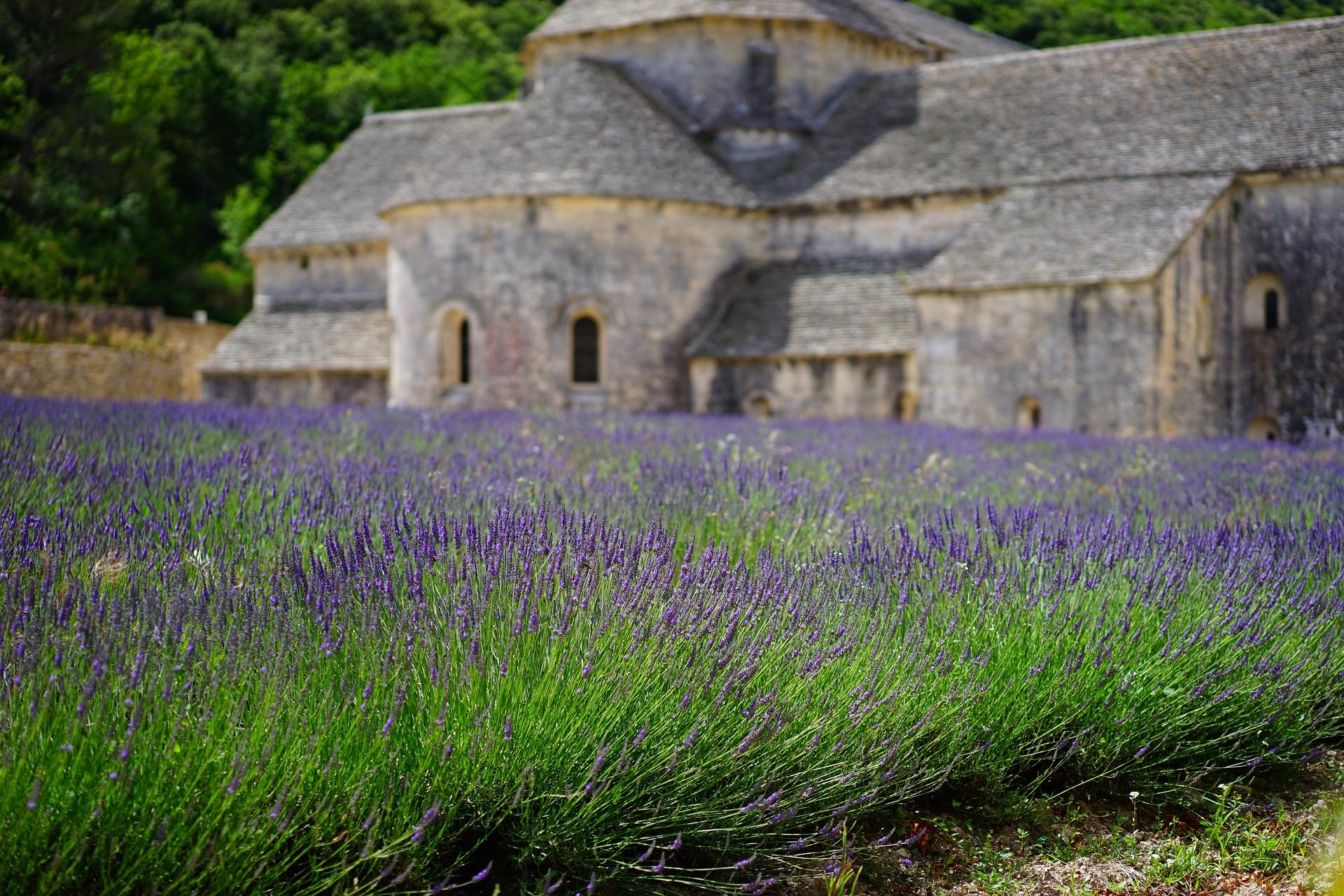 Aubagne : les petits saints de Provence en vedette sur le cours Foch