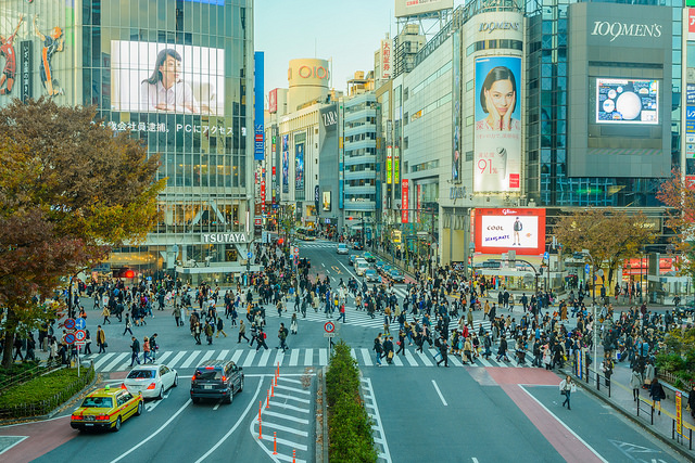 Premier voyage au Japon : les lieux incontournables à voir à Tokyo