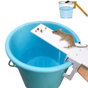 Piège à souris efficace