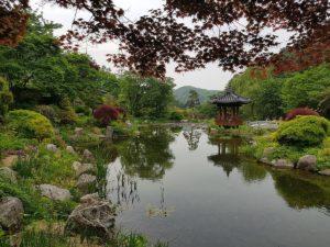 Corée du Sud : les activités en plein air pour s'occuper durant le séjour