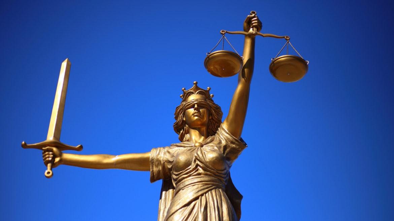Avocat en droit public : comment choisir un professionnel pour nous représenter ?