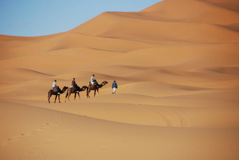 Voyage en Afrique : les sorties conseillées pour un superbe séjour