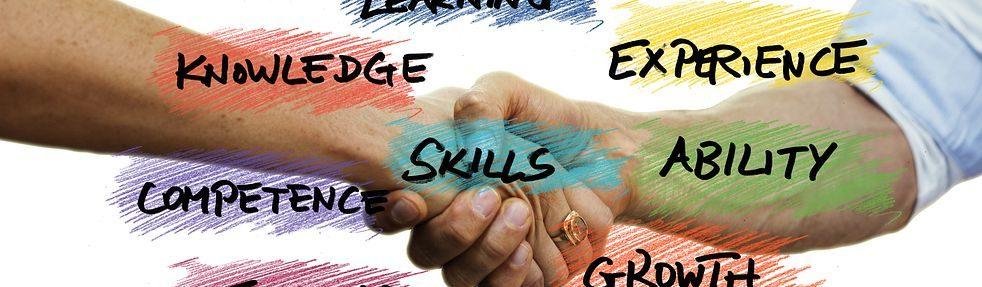 skill et développement de business